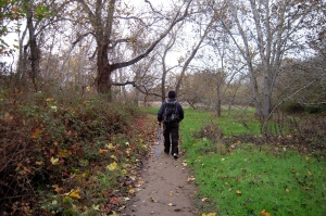 walking new paths
