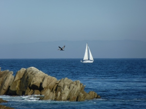Lover's Point in Pacific Grove