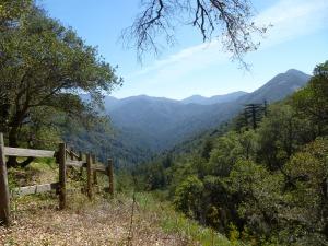 Bottcher's Gap, 7 miles inland from Highway 1