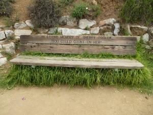bench, 2014