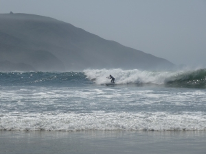 lots of surfers taking advantage of great surf