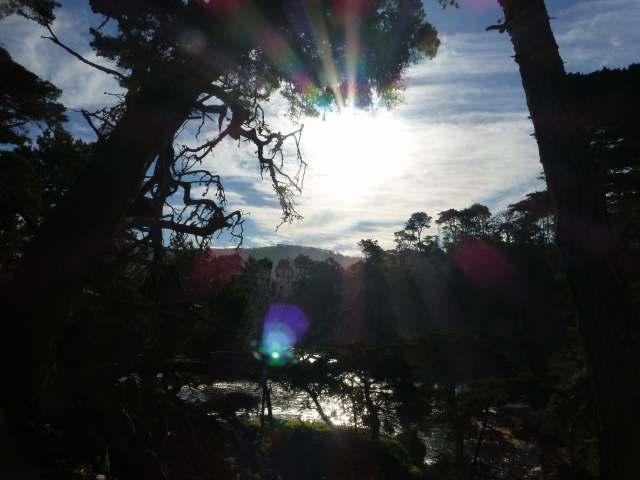 sunflare2