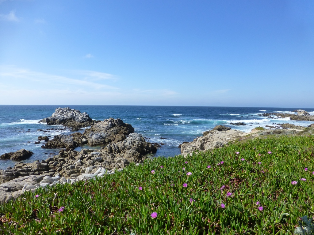here's the Pacific Grove version of that same shot
