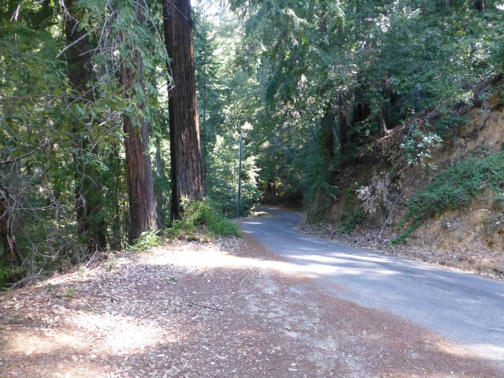 palo colorado road